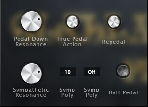 Solo interface